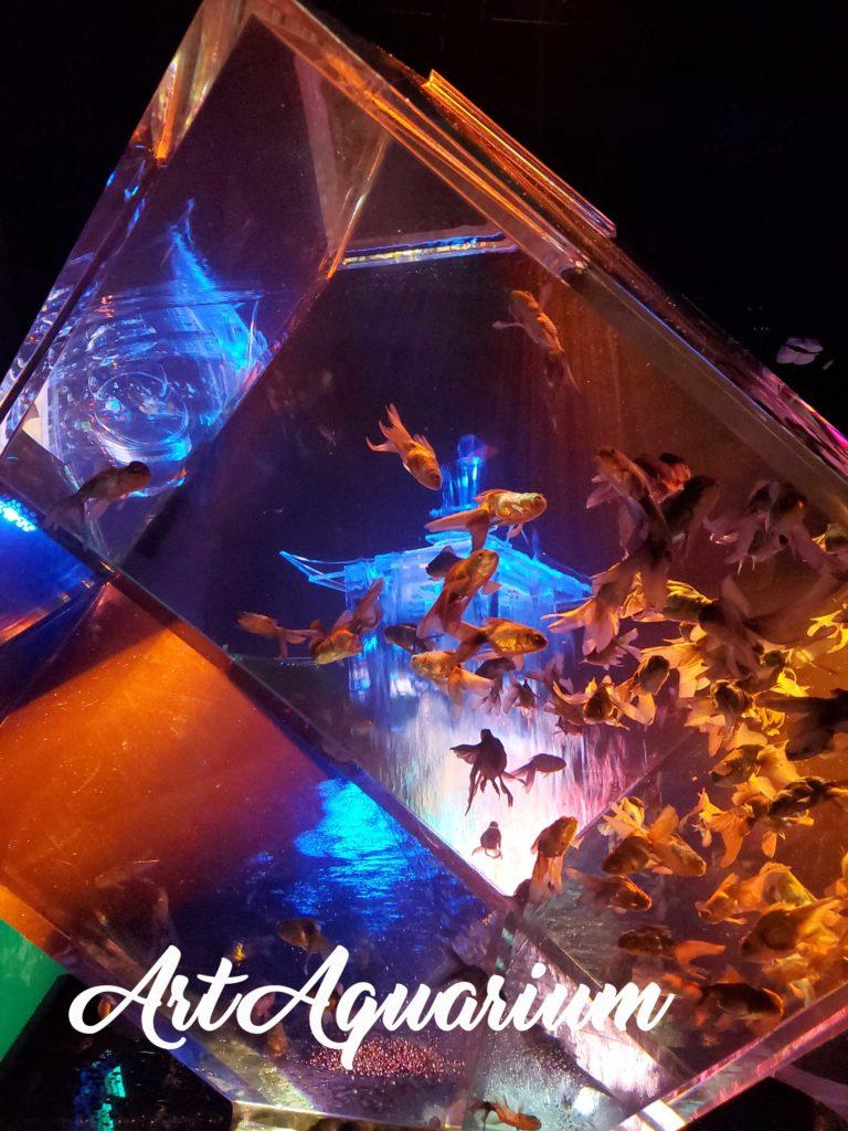 アートアクアリウム2